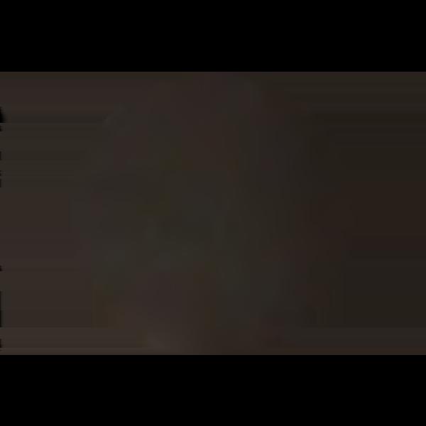 Bronze [+$6.00]