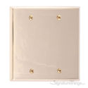 Quaker Double Blank-Polished Brass