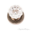 Victorian Fluted Glass Door Knob with Rosette - Antique Brass